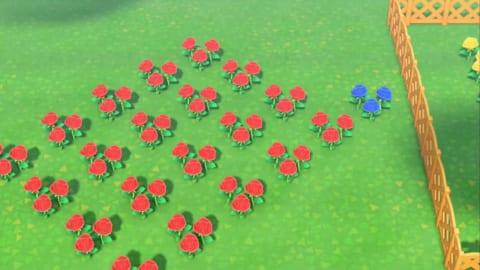 どうぶつの森 赤い花