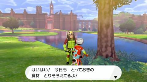 ポケモン 剣 盾 うらら か 草原