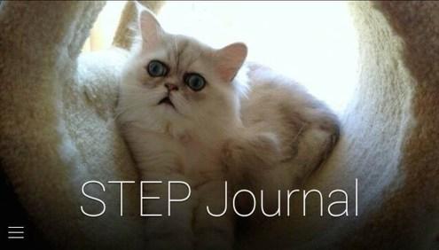 STEP Journal for Google Glass