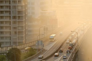 kidney is being affected by pollution
