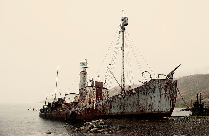 An old whaling ship on South Georgia Island in the southern Atlantic Ocean. Credit: Wikimedia Commons