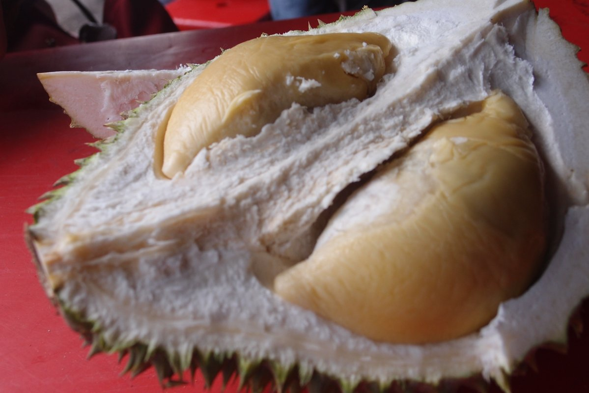 review-taste-test_durian-fever_d24