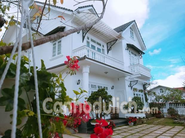 Villa Cẩm Tú Đà Lạt