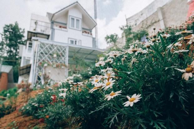 Housing Đạt - Triệu Việt Vương Đà Lạt