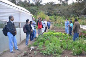 ICLEI ES_Urban agriculture_ALR