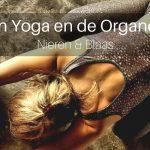 Yin Yoga en de Organen: Nieren & Blaas