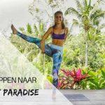 In 6 stappen naar Bird of paradise