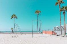 california-favre-7