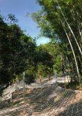 climbing-park-13