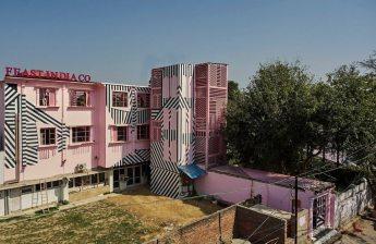 pink-zebra-11