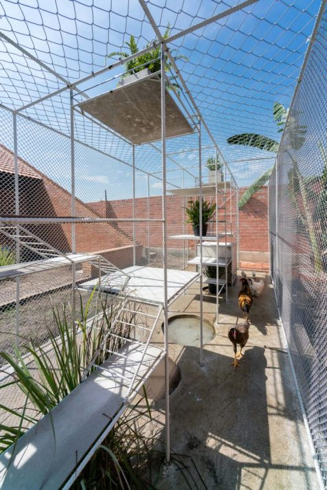 tropical-space-chicken-house-12