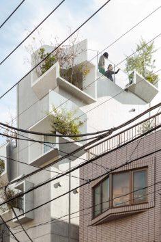 tree-ness-house-1