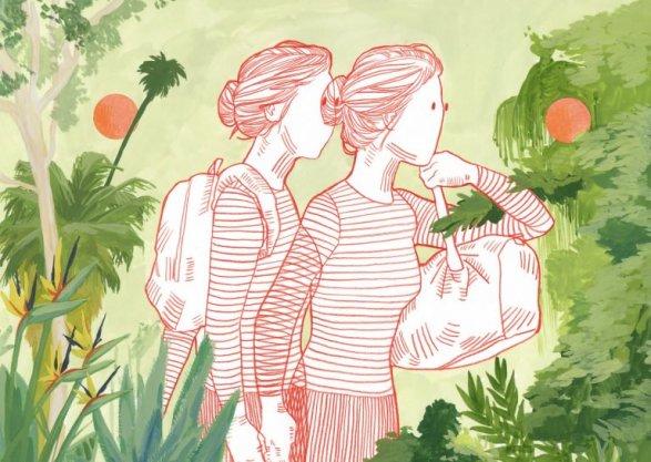 illustration-avalon-nuovo-01-768x546