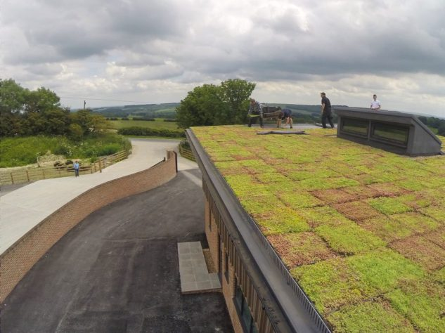 urban-roof-gradens-111