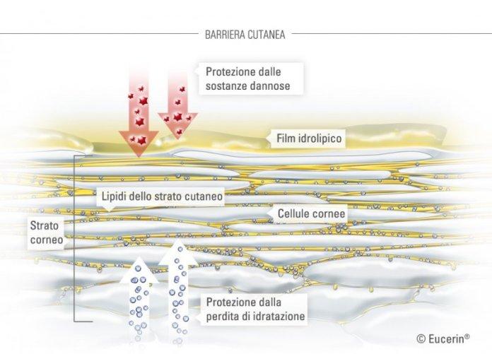 ClioMakeUp-inquinamento-male-pelle-detox-pelle-filmidrolipidico
