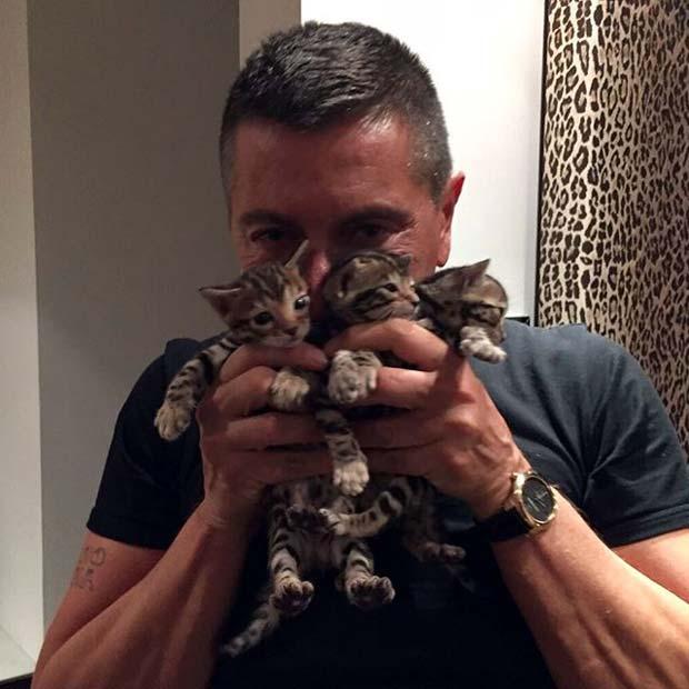 ClioMakeUp-animali-vip-famosi-star-stefano-gabbana-bengal-kittens