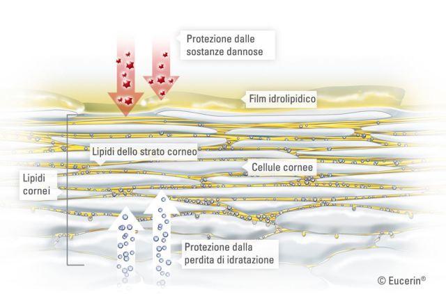 ClioMakeUp-piscina-cloro-proteggere-capelli-corpo-6