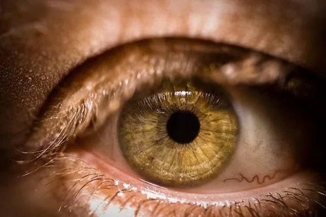 cliomakeup-occhi-piu-rari-quali-sono-2