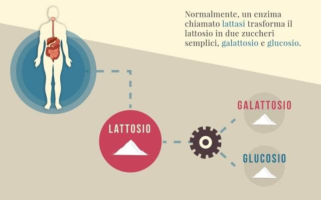 cliomakeup-intolleranza-lattosio-digestione-5