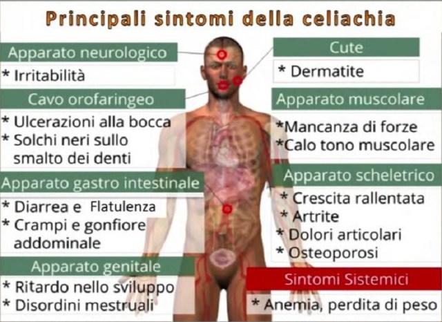 cliomakeup-celiachia-sintomi-celiachia-4