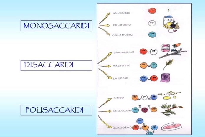 cliomakeup-carboidrati-composizione-3