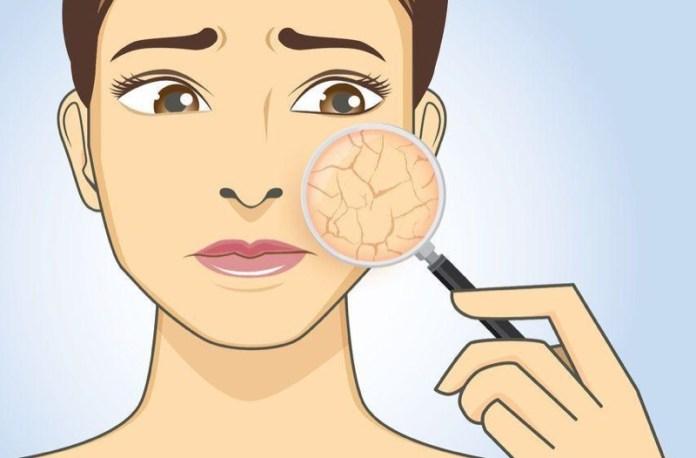 ClioMakeUp-creme-pelle-grassa-4-pelle-secca.jpg