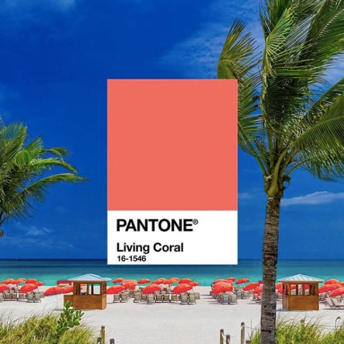 cliomakeup-colore-pantone-2019-3-tavola