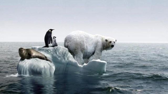 cliomakeup-alimentazione-sostenibile-2-riscaldamento-globale