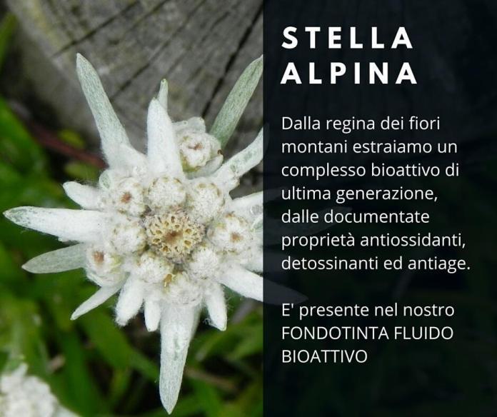cliomakeup-come-applicare-fondotinta-bio-3-stella-alpina
