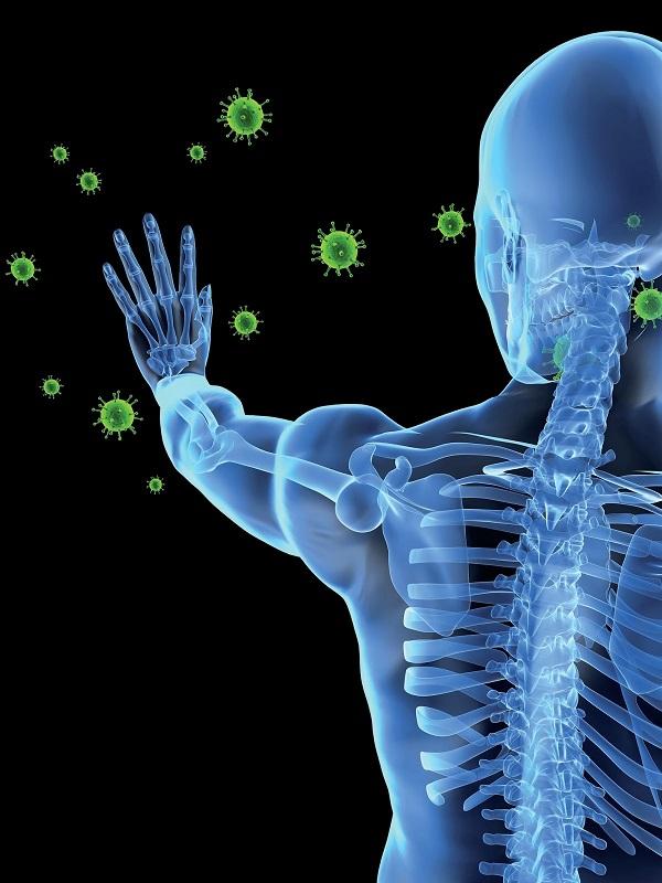cliomakeup-alimenti-sistema-immunitario-12-sistema-immunitario
