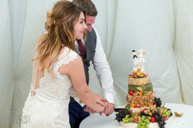 Ally and Alex cutting the cake made of cheese