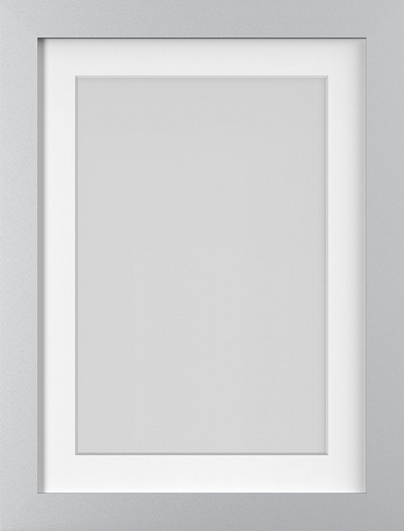 a9762c46d724 Photo Picture Poster Frames With White Mounts Black Oak Silver