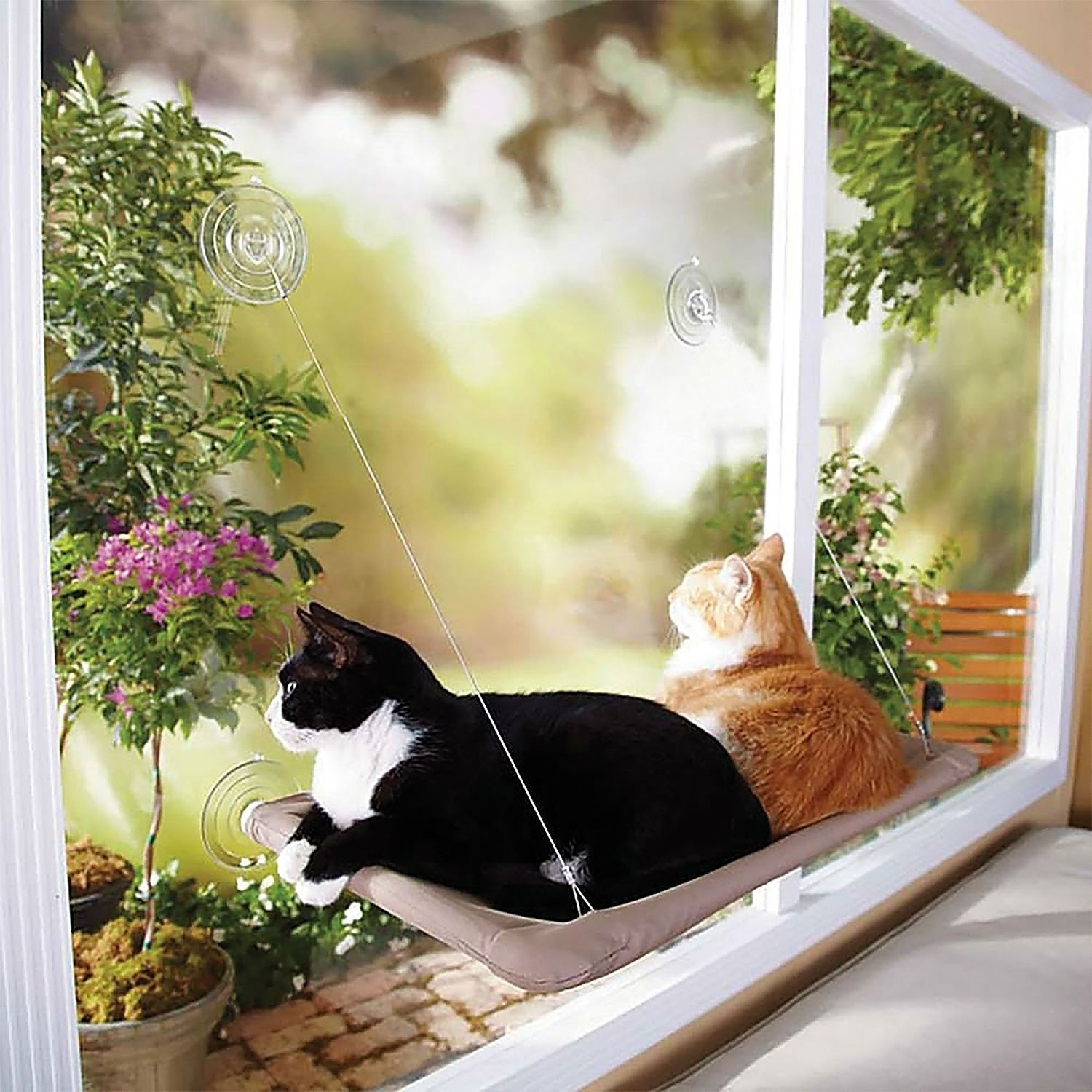 Window Mounted Cat Bed Suction Cup Hanging Pet Sunshine