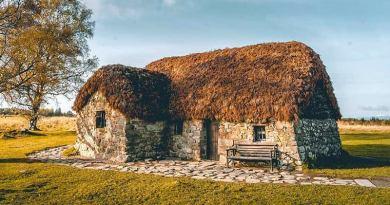Согласно новому исследованию, шотландский Гелик рискует умереть
