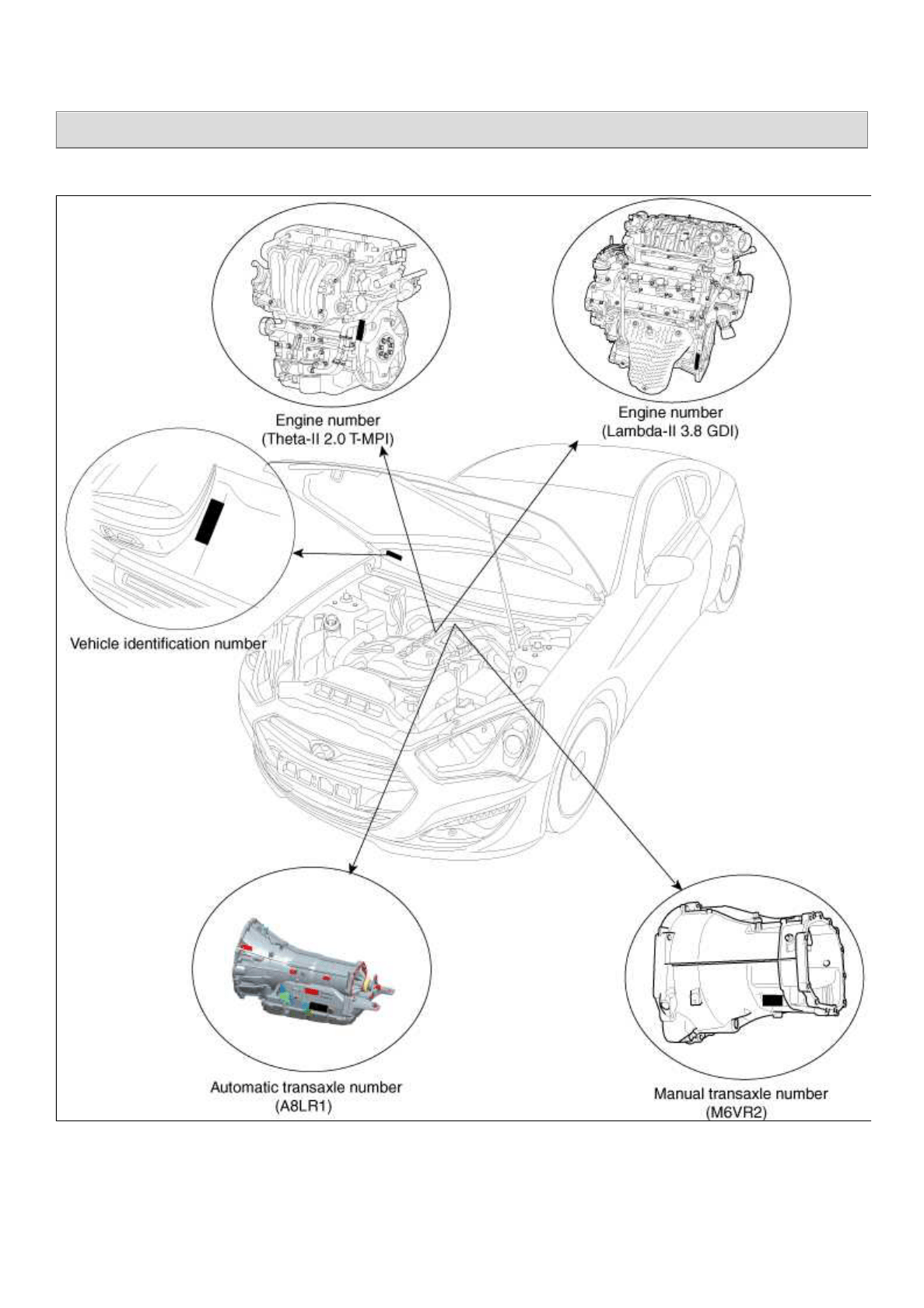 Hyundai Genesi Coupe Wiring Diagram
