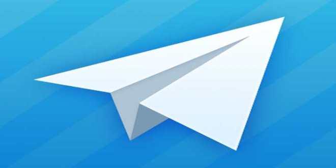 Un référendum via l'application Telegram