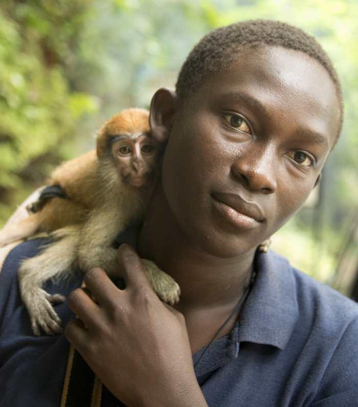6 singes sur 10 pourraient disparaître d'ici 50 ans