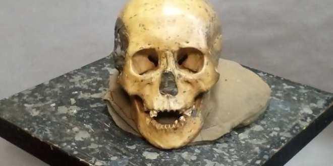 Les anciens humains de l'est de l'Asie étaient très proches des populations modernes
