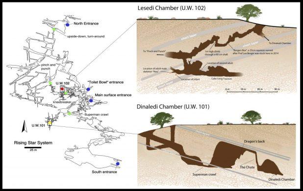 La carte des chambres Dinaledi et Lesedi - Crédit : Marina Elliott/Wits University