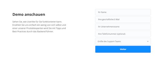 Screenshot von unserem Demo-Formular