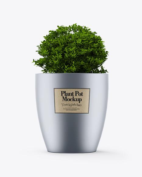 Metallic Plant Pot Mockup