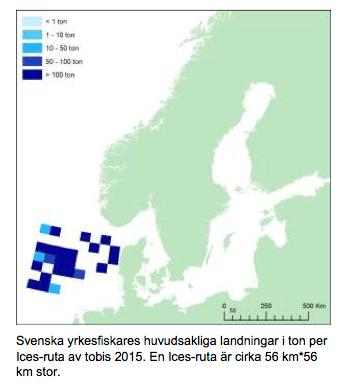 Fiskande tyskar omkom i norska havet
