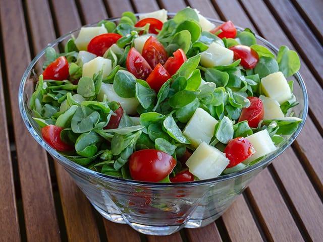 patatesli semizotu salatası