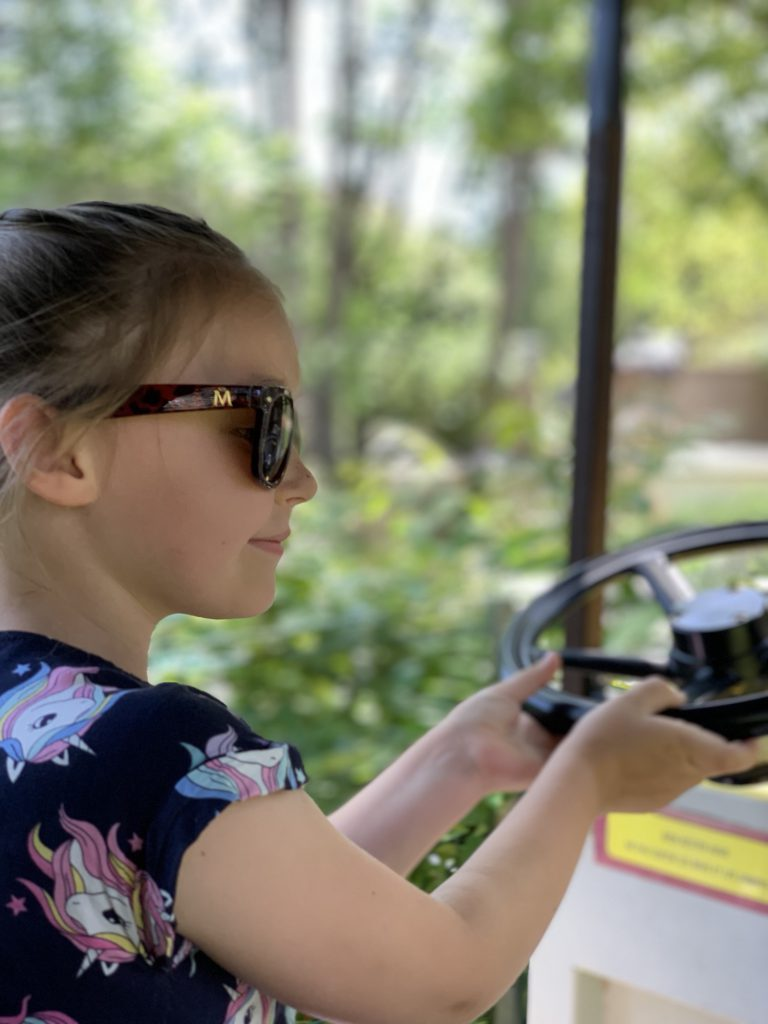 Olivia driving a car at Touroparc Zoo