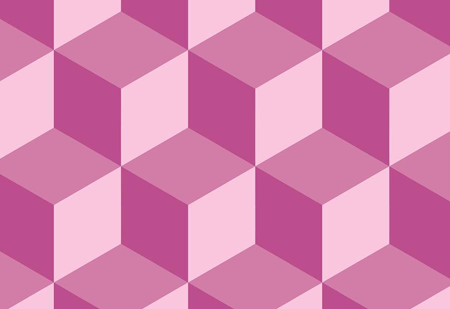 Geo Cube Raspberry Close-up