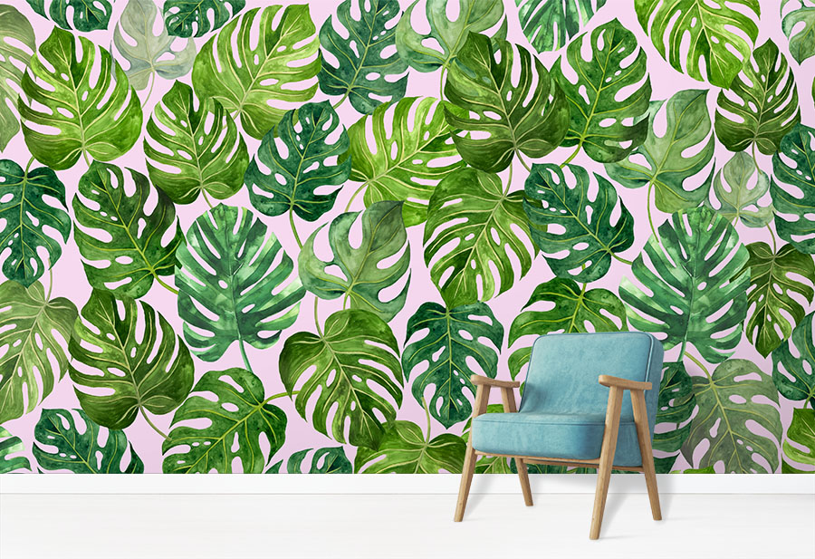 Green Leaf Monstera Deliciosa Swiss Cheese Plant Wallpaper Wall Mural in situ with comfy chair