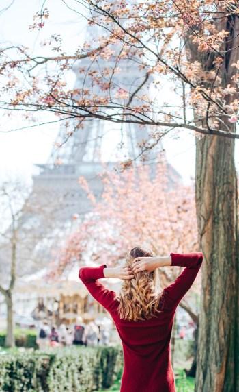 париж, сакура и эйфелева башня