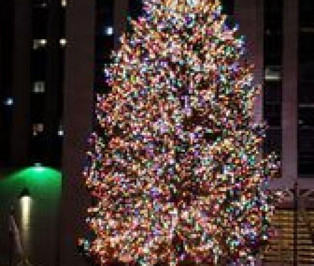 Photo Of Rockefeller Center Christmas Tree New York Ny United States Tree