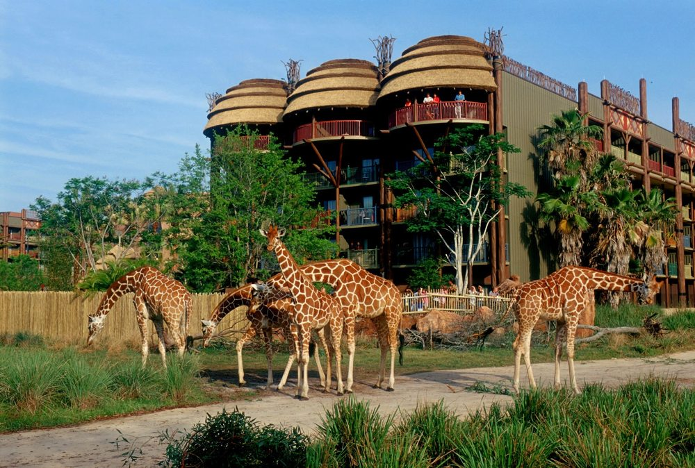 Photos For Disney's Animal Kingdom Lodge
