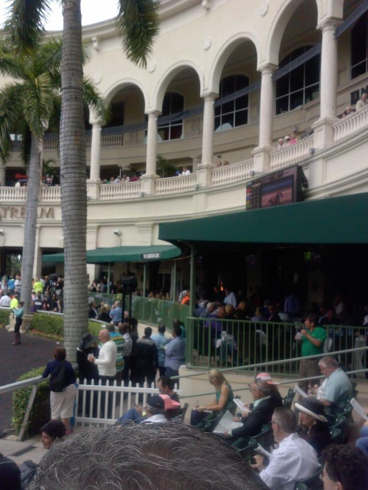 Gulfstream Park Racing & Casino - 217 Photos - Casinos ...